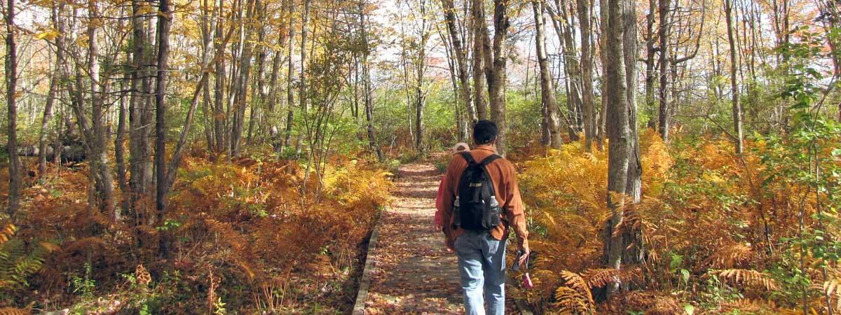 slide-maine-woods-hike
